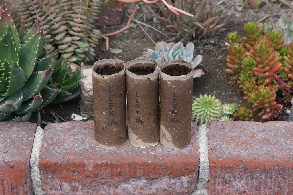 Toilet paper roller seed starting container