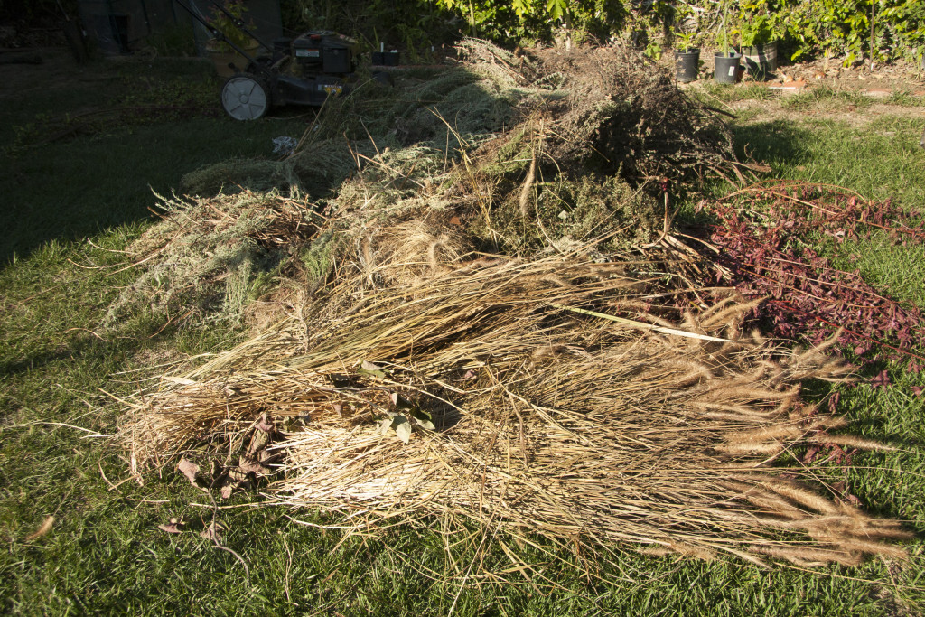 Green waste from the day's work.
